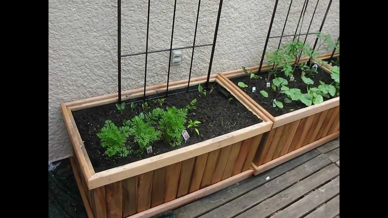 Deck Food Garden LIfe Growing Like Wild