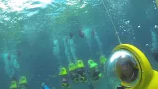 St. Thomas Underwater Adventure (Part I)