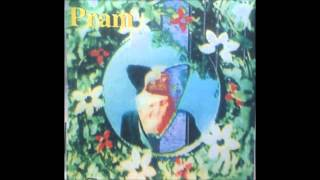 PRAM - Loose Threads (Drop Stitch)