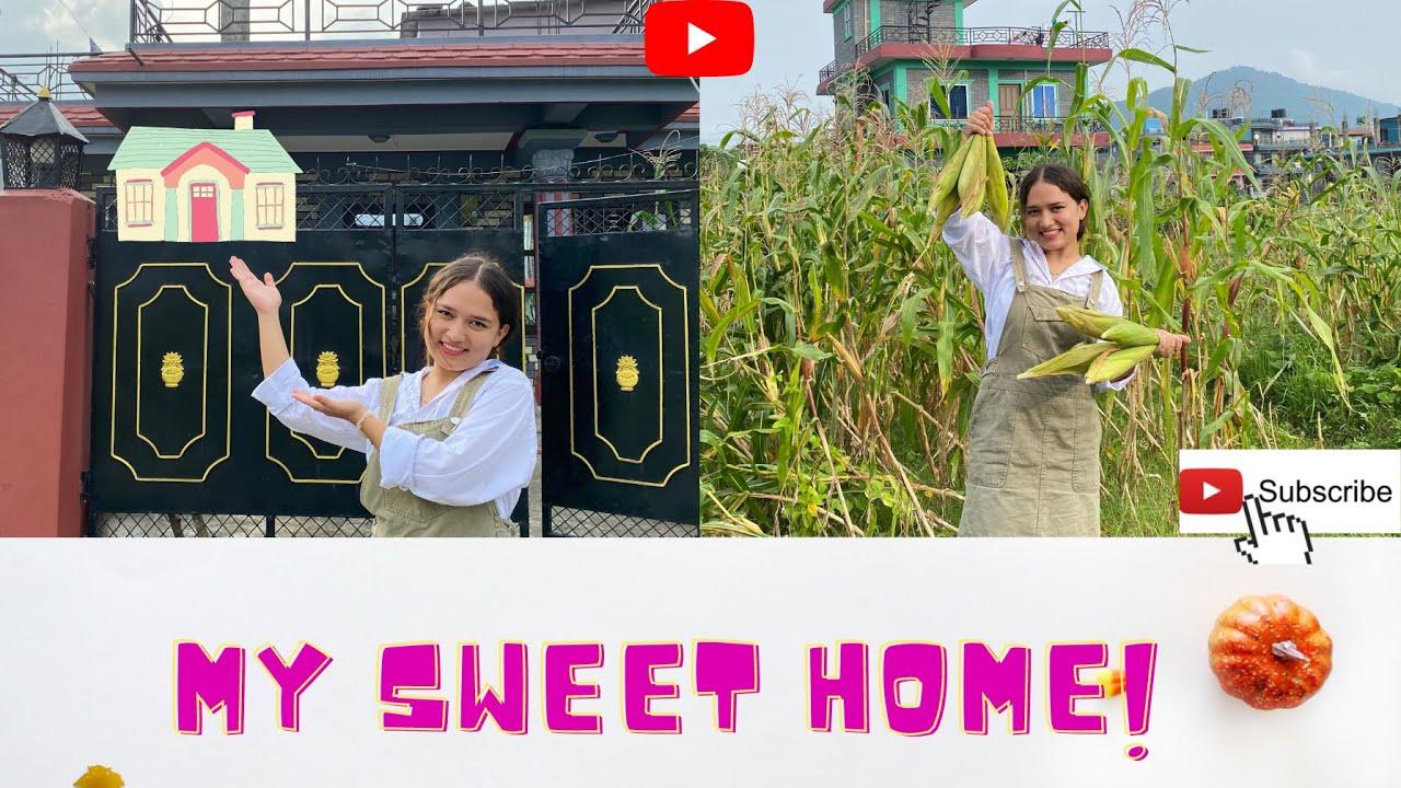 Download Home Tour 🏠| My sweet home| Happy 15 ashar 🌾|(Samiksha & Sanchita) Vlog 6
