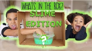 Guess What's in the Box SLIME Edition!