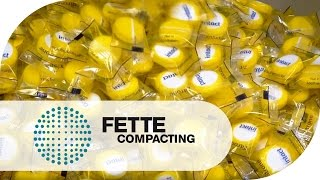 Eine Milliarde Tabletten: Die Erfolgsgeschichte FE55 | Fette Compacting