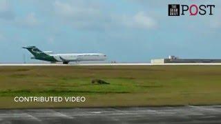 ◄ شاهد  لحظة هبوط اضطراري لطائرة بعد عطل في العجلات الأمامية: طيار بارع - المصري لايت