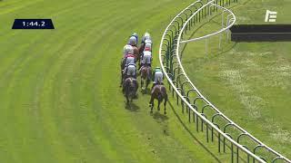 Vidéo de la course PMU QATAR PRIX DE TROARN