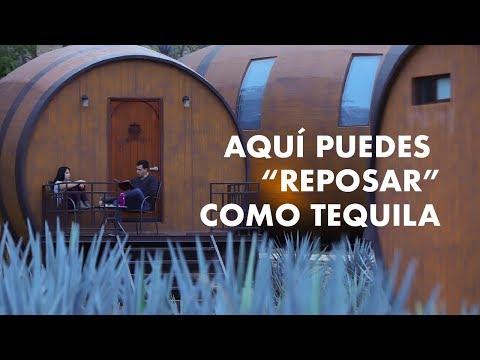 """En este hotel puedes  """"reposar""""  como Tequila"""