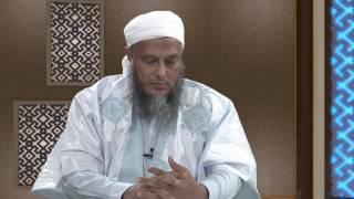 برنامج معالم 2 | الحلقة 4 | القصص القرآني 4