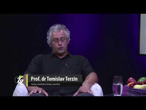 TAJNA FUNKCIJA PIRAMIDA - Prof. dr Tomislav Terzin
