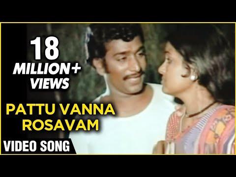 Pattu Vanna Rosavam - Kanni Paruvathile Tamil Song - Male-Rajesh, Vadivukkarasi