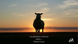 Culto On-line | IPPel 28/03/21 - 19h00