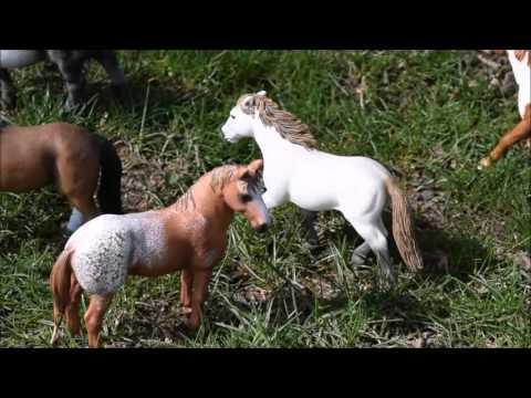 Wind Dancer The Story of One Wild Stallion part 1 Schleich movie