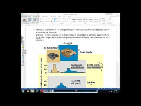 Unit 9 Lecture 3 Flow of Energy