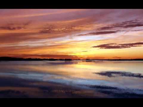 DNA feat. Suzanne Vega - Tom's Diner (FL Remix)
