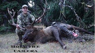 Montana archery bull elk 2018
