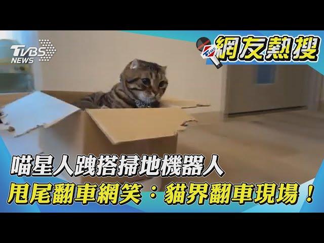 【網友熱搜】喵星人跩搭掃地機器人 甩尾翻車網笑:貓界翻車現場!|TVBS新聞