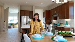Nhà mới giá ba chục tỉ đẹp và hiện đại ở San Jose ( cuộc sống Mỹ )