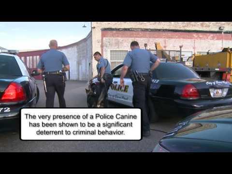 St. Paul Police K9 Foundation Pop-Up video