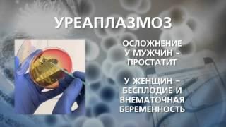 Уреаплазмоз и микоплазмоз(Что такое микоплазмоз и уреаплазмоз — причины, симптомы и характерные признаки микоплазмоза и уреаплазмоз..., 2016-03-19T09:42:37.000Z)