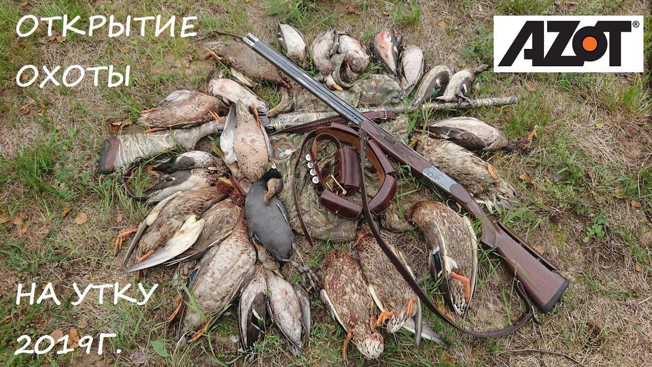 Открытие охоты на утку 2019г