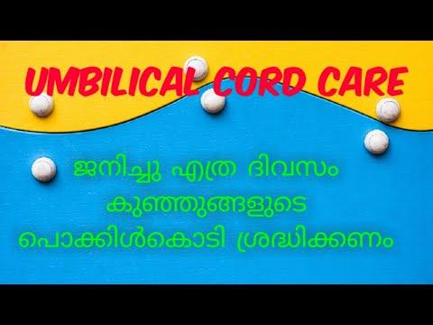 നവജാതശിശുക്കളുടെ പൊക്കിൾകൊടി എത്ര ദിവസം പരിചരിക്കണം /   umbilical cord care in newborn (മലയാളത്തിൽ)