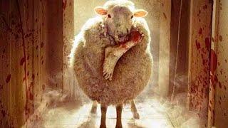 Pelicula ovejas asesinas