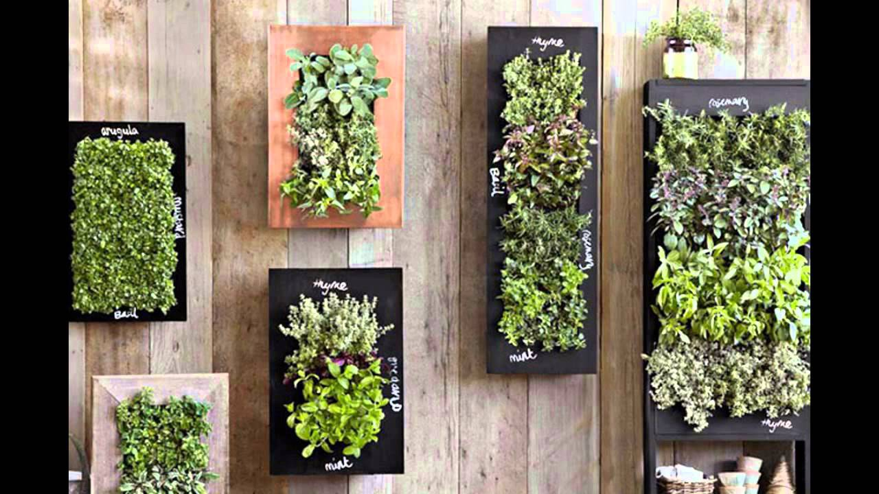 Home vertical garden wall ideas youtube for Home vertical garden