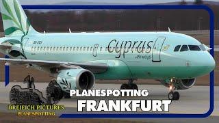 Planespotting Frankfurt Airport | Februar 2019 | Teil 1