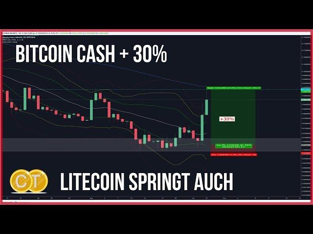 ❗️6500$ Bitcoin, passt morgen auf! 🤨BCH +30% Litecoin +11% OCN am Ziel