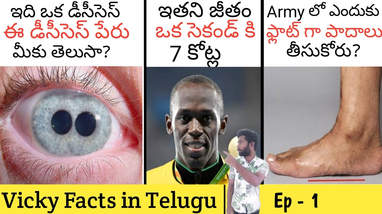 TOP UNKNOWN FACTS TELUGU   MOST AMAZING AND INTRESTING ...