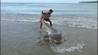 Land based Shark fishing NZ thumbnail