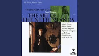 Allegez moy, doulce plaisant brunette (1976 Remastered Version) : II - Lute duet version (Anon...