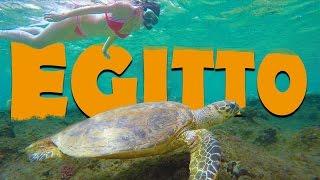 La barriera corallina PIÙ BELLA DEL MONDO! - Egitto
