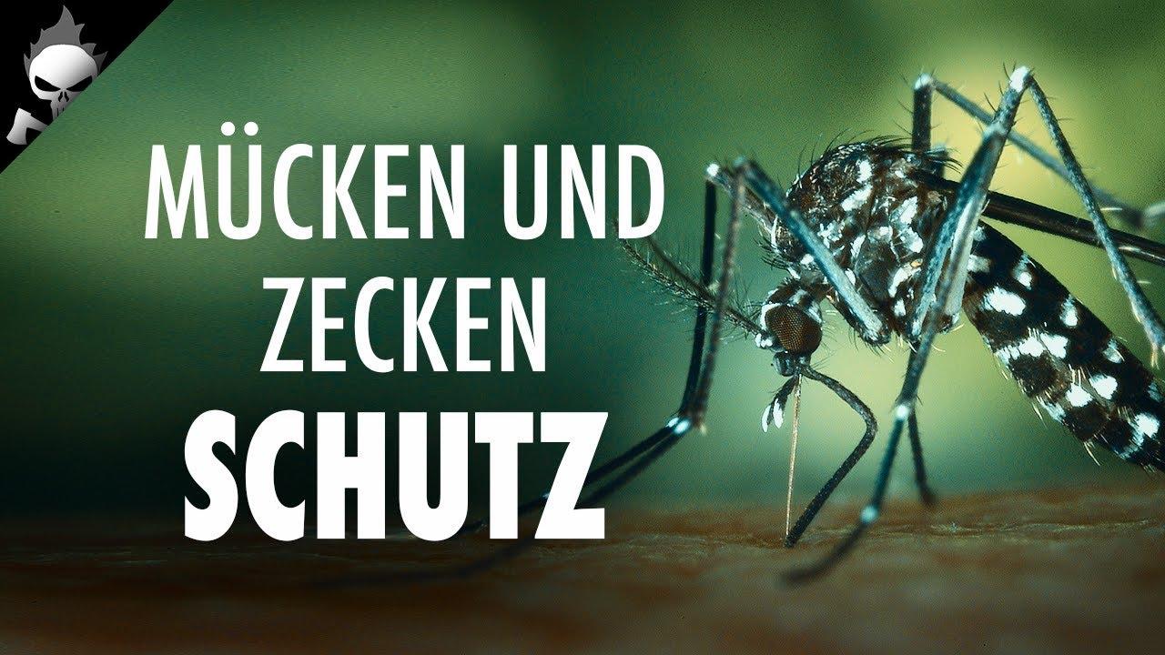 m cken und zecken welches mittel hilft tipps u empfehlungen gegen moskitos ballistol