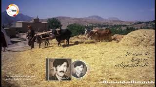 Sarwar Sarkhush (دخترگ کته شده داده مه چند گو میخروم(سرورسرخوش