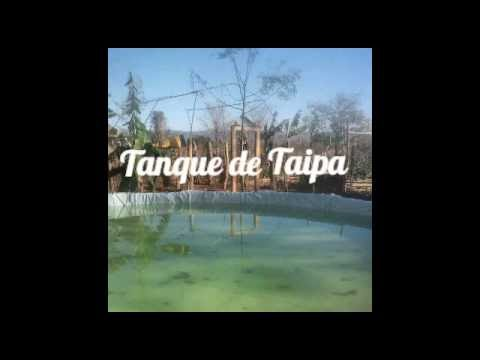 Tanque de Taipa - Sisteminha Embrapa