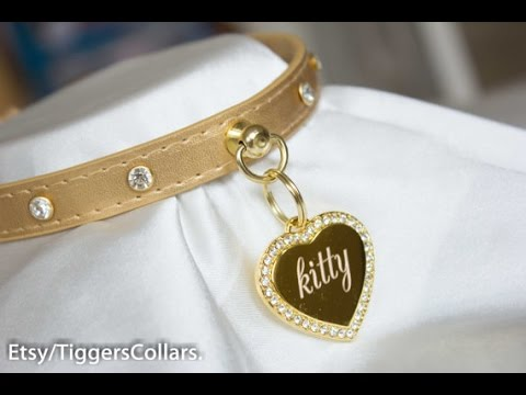 Tiggers Collars unboxing and Review - YouTube