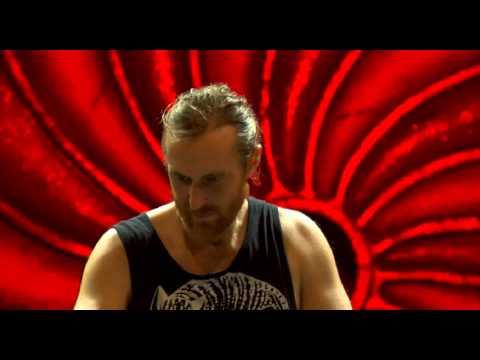 David Guetta Tomorrowland 2014 (last 25 minute)