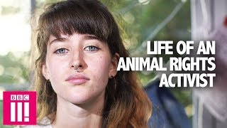 Life Of An Animal Rights Campaigner: How Far Would You Go? | Generation Activism
