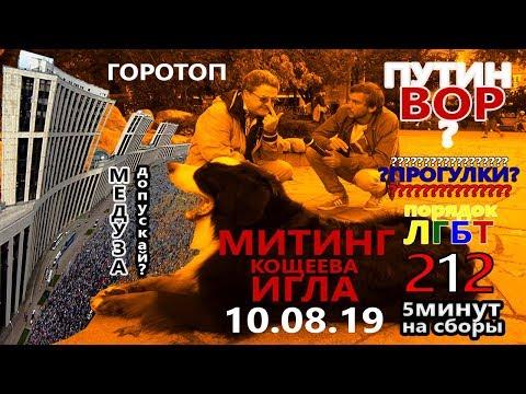 Правительство Москвы разрешило митинговать 10.09.2019. ГОРОТОП серия 2