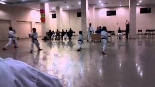 Exam Juan Pablo Karate 4to Kyu Shihan: Ishikawa y Sensei: Alejandro Castro