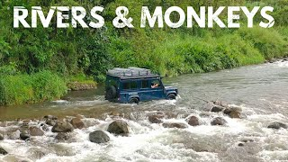 Camping with monkeys in Costa Rica - S2E19