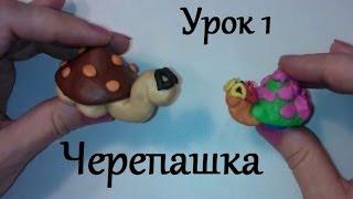 Лепка из пластилина с детьми Животные Черепаха Sculpt plasticine turtle