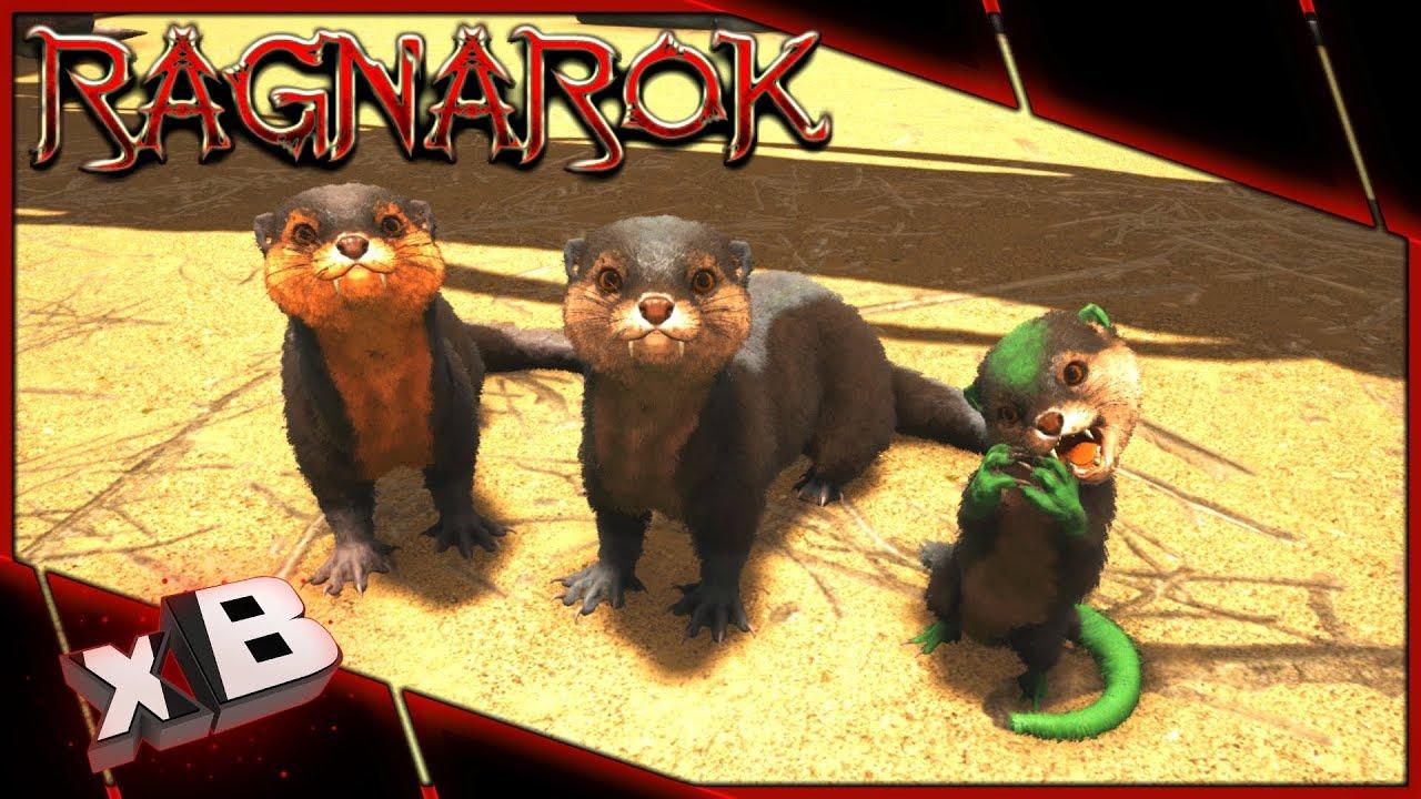Cute Otter Wallpaper Cute Fluffy Baby Otter Ark Ragnarok Evolved Ep 42