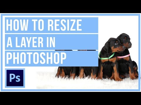How to make a layer bigger or smaller in photoshop
