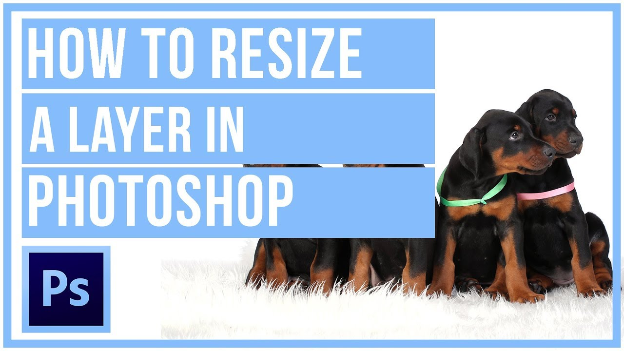How To Resize A Layer In Photoshop CC – Photoshop Tutorial