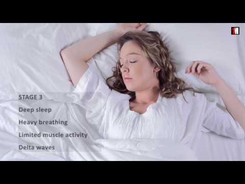Sleep Cycle: The Stages You Go Through Every Night During Your Sleep | 1MinuteDoc