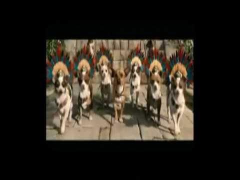 Beverly Hills Chihuahua - Ringtone
