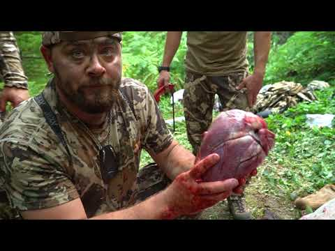 HOW TO: REMOVE THE HEART AND LIVER WITHOUT GUTTING AN ELK (GUTLESS METHOD) : STEP 6