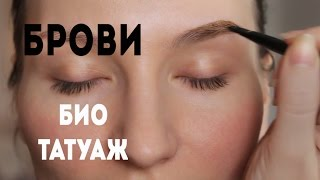 видео Биотатуаж бровей хной: техника окрашивания, как сделать в домашних условиях и сколько держится (фото и отзывы)