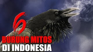 MISTIS INILAH 6 BURUNG PENUH MITOS YANG ADA DI INDONESIA