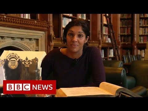 What's it like being a new MP? - BBC News